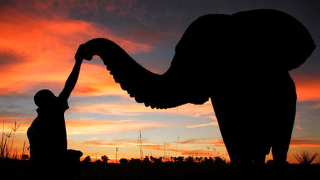 Top 5 Reasons to Visit Botswana
