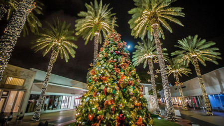 Miami Beach Hosts Seasonal Holiday Offerings