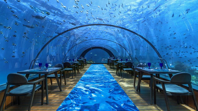 Michelin Starred Maldives Fine Dining Amongst The Fishes