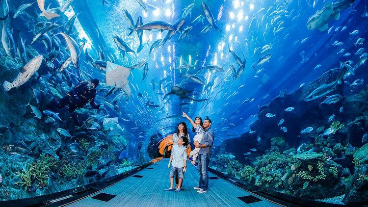 Explore Some of Dubai's Best Attractions Free with Armani Hotel Dubai