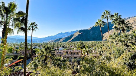 Luxury Boutique Relaxation at The Willows Historic Palm Springs Inn