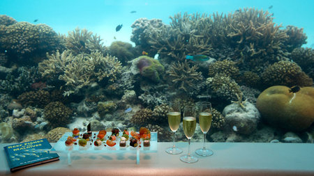 Huvafen Fushi Launches Underwater 'SpaQuarium' in the Maldives
