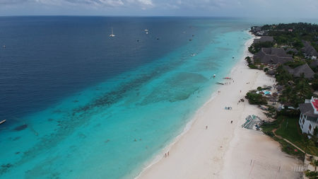 Best Luxury Beaches to Visit in Zanzibar