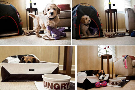 Jet Set Pet: New York's Jumeirah Essex House Introduces Canine Turndown Program