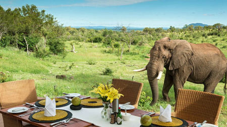 Top 3 Exotic Christmas Experiences in Africa