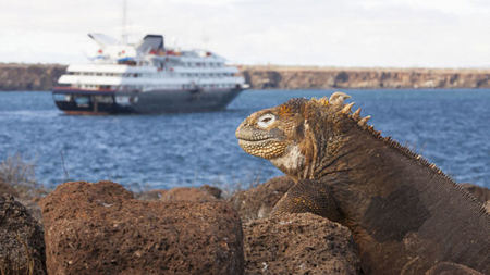 Silversea's New Galapagos Itineraries Set Sail