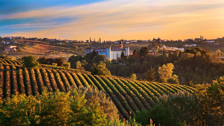 Top 5 Destinations to Put on Your Travel Bucket List if You Love Wine