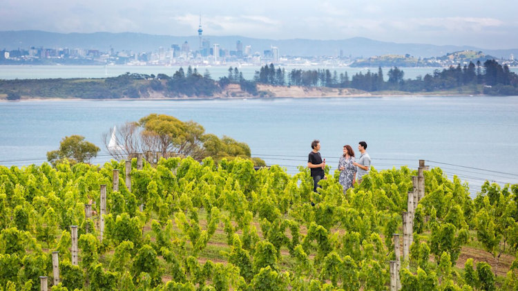 Going the Extra Mile to Find the World's Best Wine