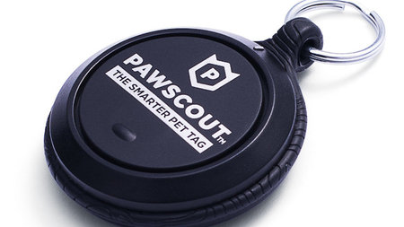 Pawscout: The Smarter Pet Tag