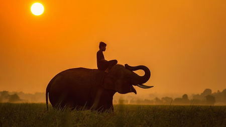 Luxury eVisa for your Luxury Cambodia Trip