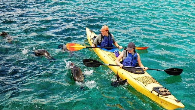 Soft Adventure Tours Attracting More Families Than Ever