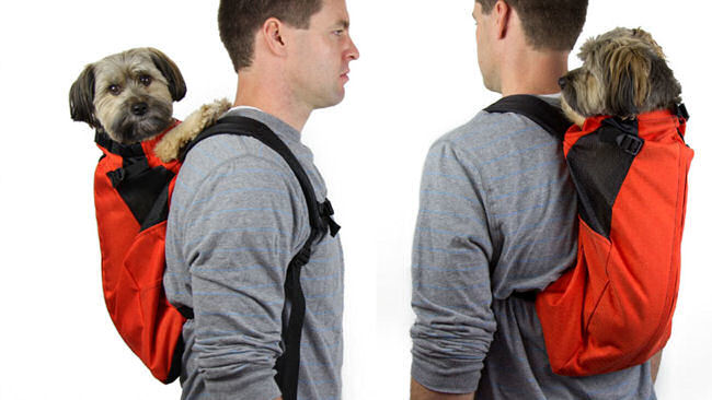 Plan a Trip with Your Pet with K9 Sport Sack