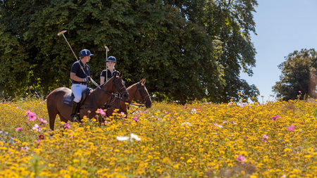 Coworth Park Presents The Ultimate Polo Experience Package