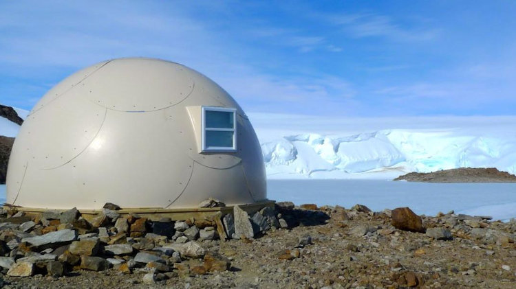 The Ultimate Explorer's Trip to Antarctica and South Africa