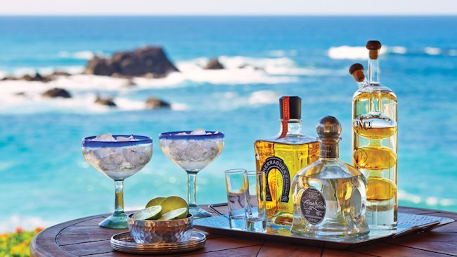 Ultimate Tequila Tour Offered by Four Seasons Resort Punta Mita