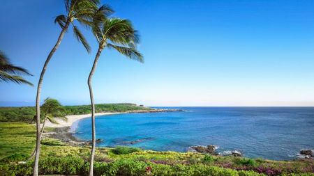 Discover Lanai: The Airfare is Covered this Winter