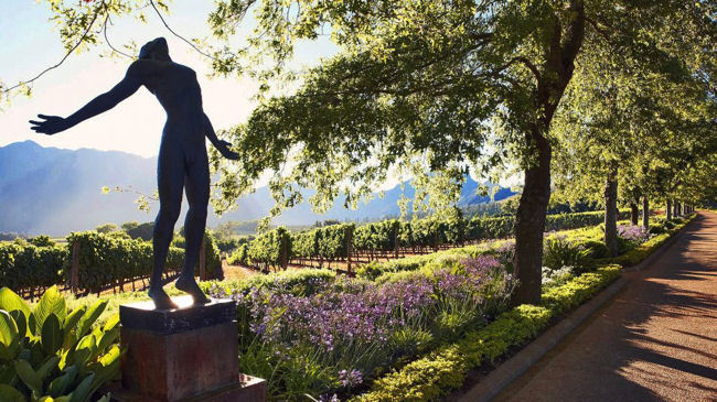 South Africa: Discover the Unexpected Art Scene in the Stellenbosch Winelands