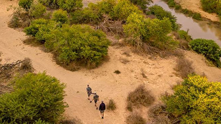 Kwandwe Private Game Reserve Offers New Wilderness Walking & Fly Camping
