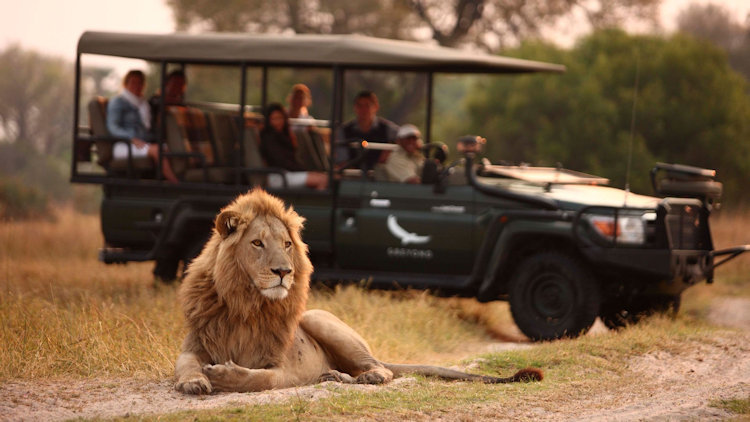 5 Recommended Luxury Family Safari Lodges in Southern Africa