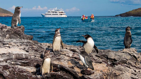 A Luxury Journey Through the Iconic Galapagos Islands