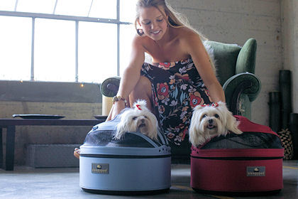 Sleepypod Pet Carrier Perfect for the Jet Set Pet