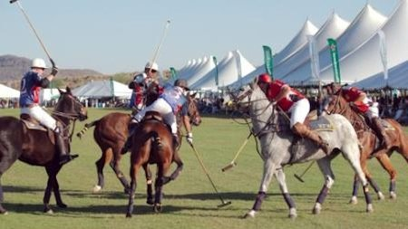 USA's Largest Polo Event To Welcome Westminster Winner, High-End Dog Fashion Show