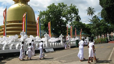 New Private Sri Lanka Tours: Tea, Elephants, Buddhism, Luxury