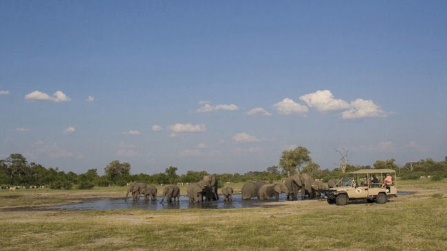 African Safari Adventures For All Ages with Orient-Express
