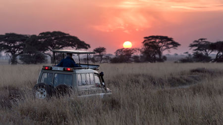 Carry Less, Enjoy More: Here's Your Laid-back Luxury Safari Guide