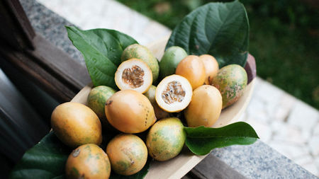 Tropical Fruit Trees You Can See While Traveling Throughout Asia
