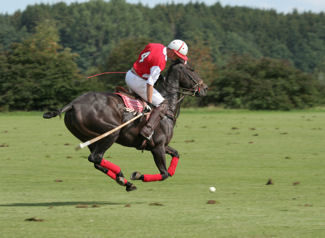 Luxury Travel Insider Guide to Cartier International Polo