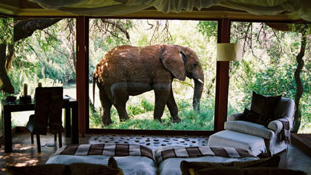 Sanctuary Retreats Adds New Safari Lodge in South Africa