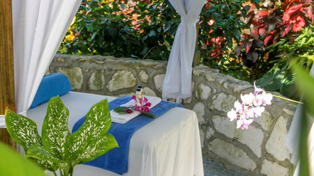 Holistic Wellness Escape at Hotel Mockingbird Hill in Port Antonio, Jamaica