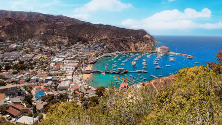 5 Reasons To Visit Catalina Island This Spring