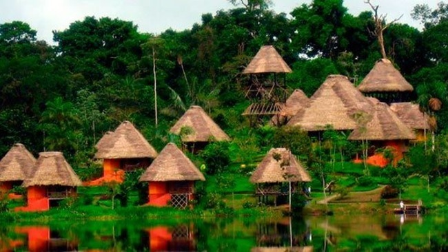 Spend the Night in an Amazon Rainforest Eco Lodge