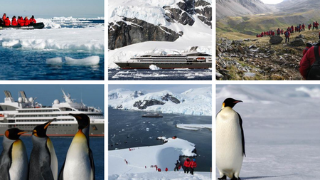 Luxury Adventure Operator INCA Offers New 18-Day Antarctic Expedition