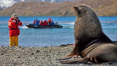 Fly The Falklands Crossing with Lindblad Expeditions