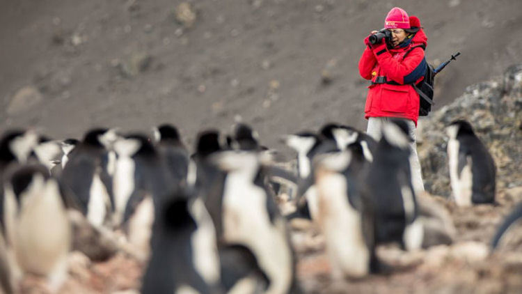 Save up to $9,000 on an Abercrombie & Kent Photo Safari to Antarctica