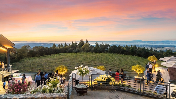 Southern San Mateo County: Museums, Gardens & Wine, Oh My!