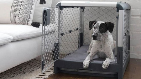 Revol by Diggs Collapsible Dog Crate Convenient for Traveling