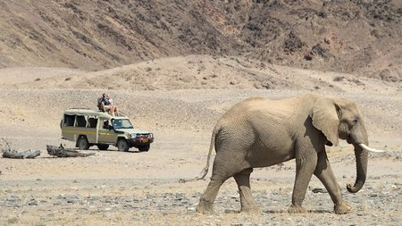 Wilderness Safaris Launches New Guided Namibia Exploration