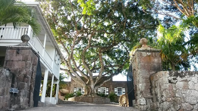 Time Traveler: A Visit to Nevis is a Visit to the Old Caribbean
