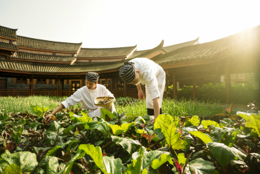 Six Senses Qing Cheng Mountain to Hold Weekly Farmers' Markets for Guests