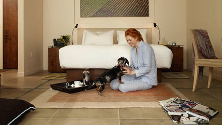 Bardessono in Napa Valley Launches Spa Services and Restaurant Menu for Dogs