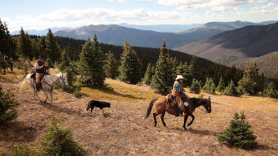 Dude Ranchers Association - An all-inclusive vacation experience like no other
