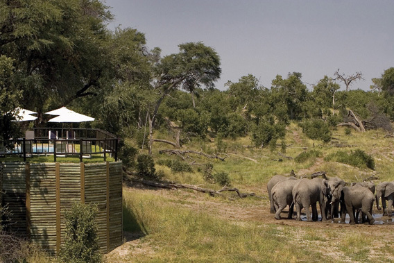 Belmond Savute Elephant Camp - Chobe National Park, Botswana -slide-12