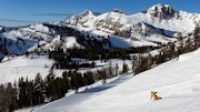 Unprecedented Access to Jackson Hole this Winter with Ski Free Stay Free Packages