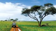 Great Safaris Offers Limited Time Family Spring Break Special to Tanzania
