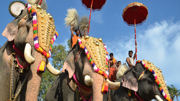 Asia Transpacific Journeys Offers Exclusive Access to Asia's Best Festivals