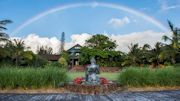 Lumeria Maui Offers Spring Renewal Cleanse in April & May 2015